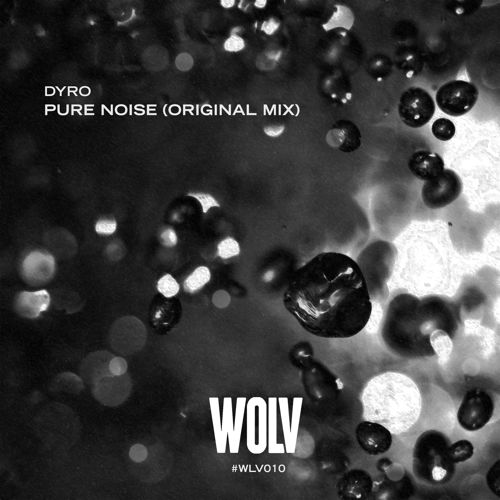 dyro pure noise
